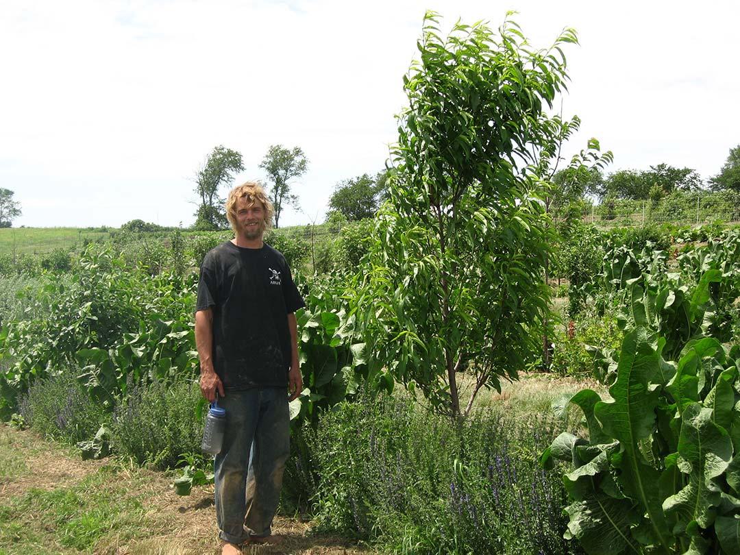 Joel And Jai Kellum S Farm Permaculture Project