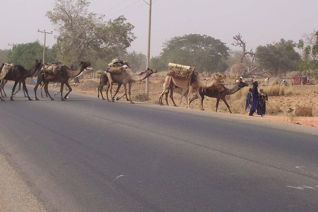 Nigeria 2007 057