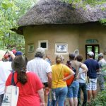Tour of Thatched, Straw Bale Home